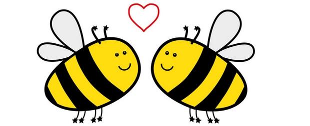 abeilles en amour