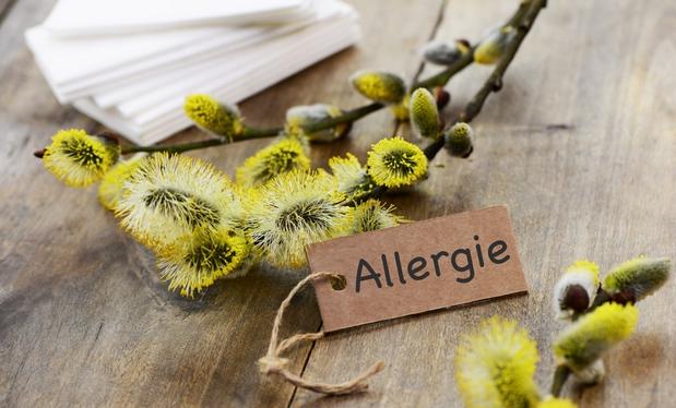 l'allergie aux pollens est une contre-indication à la consommation de miel