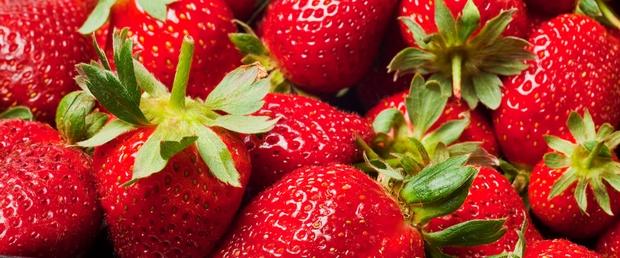 des fraises pour la recette du blanc-manger au miel d'acacia et fraises - Mon  petit pot de miel.com