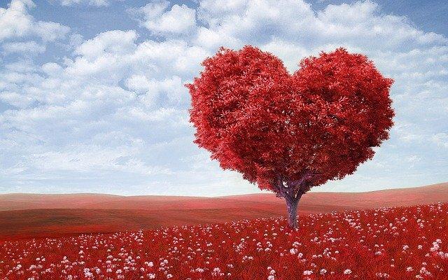 les symboles de la saint valentin la fête des amoureux
